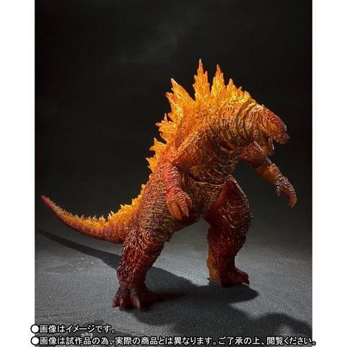 Burning Godzilla2